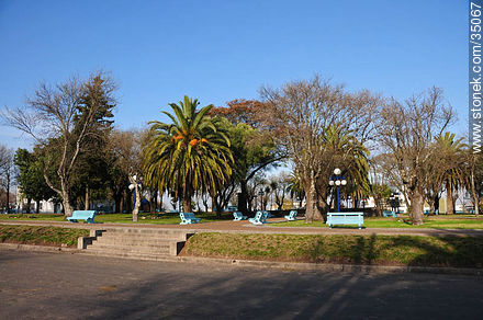 Independece square - Photos of Young city, URUGUAY. Image #35067