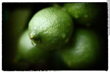 Green lemons - Photos of fruits, MORE IMAGES. Image #45557