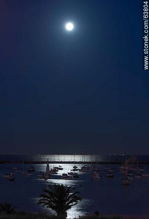 Full moon illuminating the Puerto del Buceo - Photos of Buceo quarter, URUGUAY. Image #63804