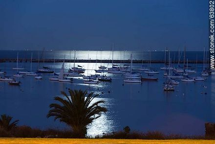 Puerto del Buceo lit by moonlight - Photos of Buceo quarter, URUGUAY. Image #63802