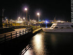 Photo #31342 - Winter night in the port of Punta del Este