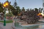 Photo #63939 - Quillota Square at sunset. Art in the root of a fallen tree