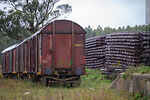 Foto #69733 - AFE freight cars
