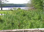 Kittatinny Valley State Park - Foto #12644